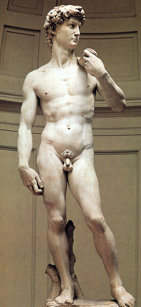 michelangelo-sc-david_optim