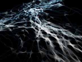 Пројектантска радионица: Комплексне Морфологије – Алгоритамски дизајн