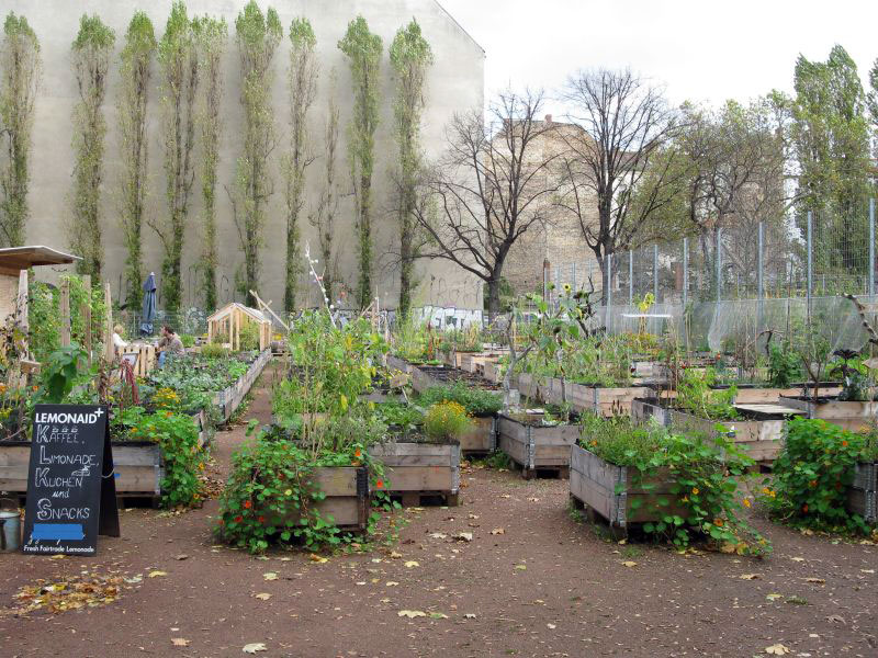 berlin-urban-gardens_o