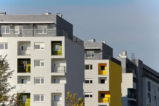 RAUM-Arhitekti_Dr-Ivana-Ribara-559