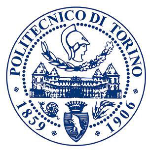 Politecnico-di-Torino_logo_opt