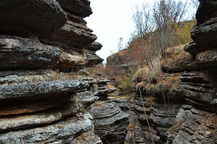 Park_prirode_Stara_planina_15a_opt