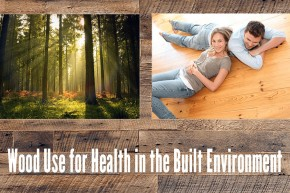 "Guest Lecture: ""Wood Use For Health In The Built Environment"" – dr Michael Burnard"