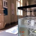 201718_U1NA1_izlozba_Aula---21-of-151