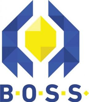 BOSS платформа – тестирајте вашу пословну идеју