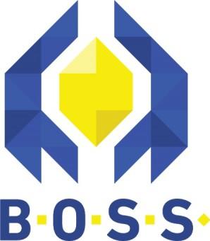 BOSS platforma – testirajte vašu poslovnu ideju